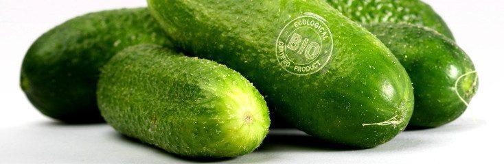 Marcaje láser directo sobre piel de hortaliza