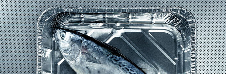Fish traceability will improve with a new regulation